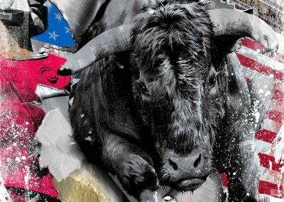 alu_leonidas-bull-150x100-web Kopie